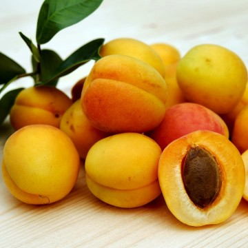 Apricots in Nebbiolo wine